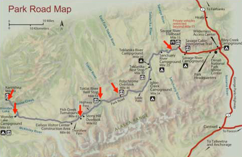 Figure 1. Map of Denali Park Road. Red arrows indicate destination points along the route.